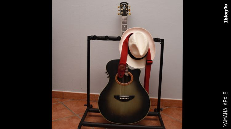 YAMAHA APX-8 acoustic guitar On The Job by Luciano D'Addetta