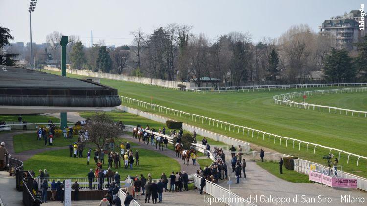 Ippodromo del Galoppo di San Siro - Cavallo di Leonardo